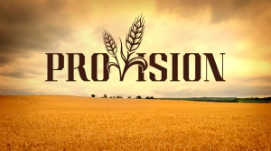 Provision_Logo_685x385